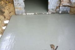 project_dendolder_6